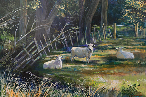 Sheep Resting in the Shadows by Vonnie Sterritt